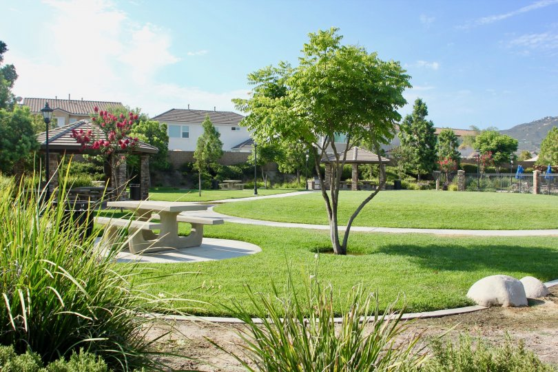 Park scene with gazebos and picnic tables in the Hawthorne community of Temecula, CA.