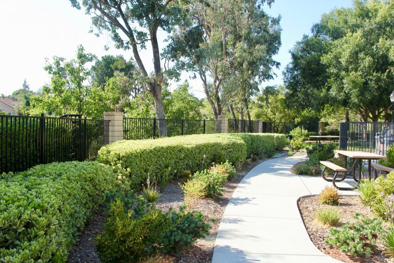 landscaped outdoor area with picnic area, large trees beautiful shrubs