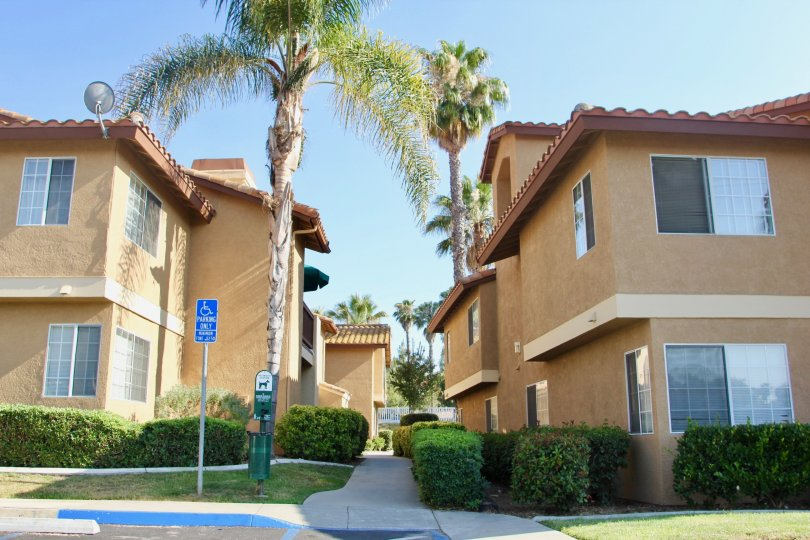 Breath taking brown buildings and greenery of Palm Valley Condos, temecula, California