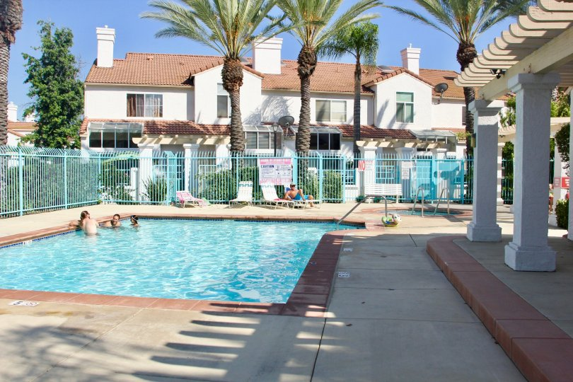 palm tree lined pool area at Rancho Del Mar in Temecula, CA where people swim and sun
