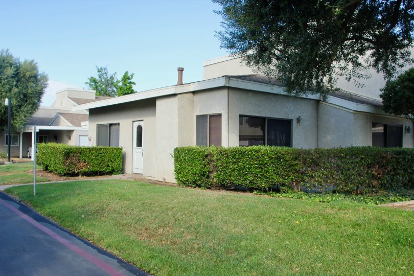 Bushes surrounded the manicured lawns of the grey casitas of Rancho Meadows