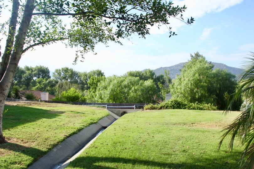 A beautiful morning in the Rancho Meadows park with children playing and picnic tables