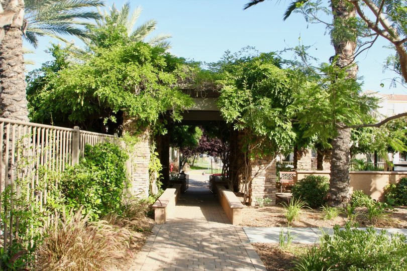 Palm trees and other bushes surround the entrance to this courtyard at Reflections at Temecula Lake