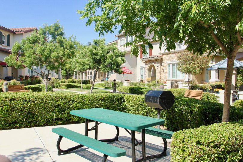 Outdoor grilling area and community area surrounded by shrubs grill trees and neighbors