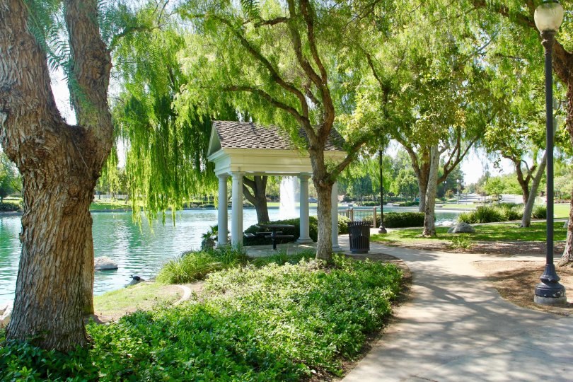 Vista lakeside fountain view pathways walk in the tree gardens. A picnic table and Patagonia