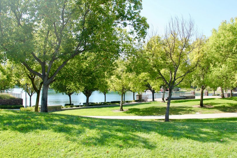 Lakeside view garden walk with grass and trees to enjoy the outdoors