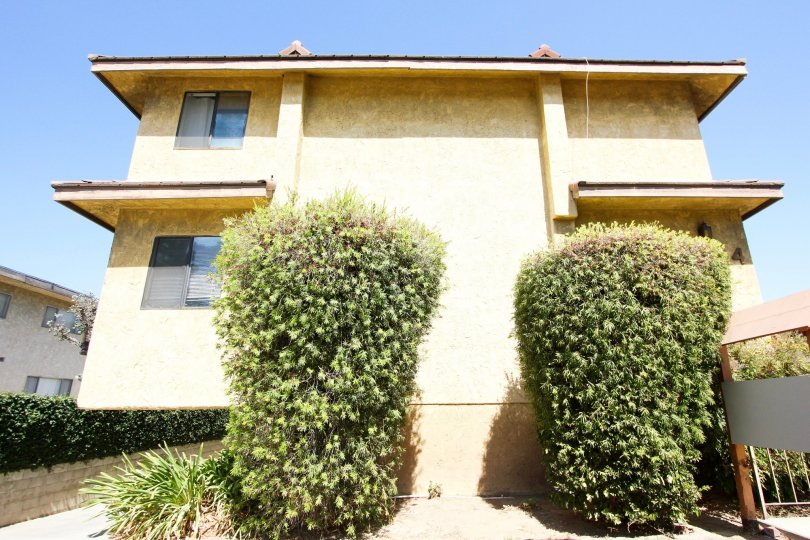 The landscaping around 324 N Stoneman Ave in Alhambra California