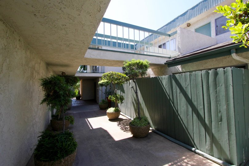 The fence around the units in 330 N Chapel Ave for privacy
