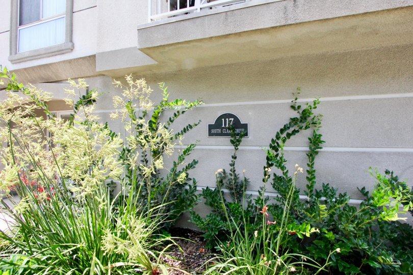 Green flowers of 117 S Clark, Beverly Center, california