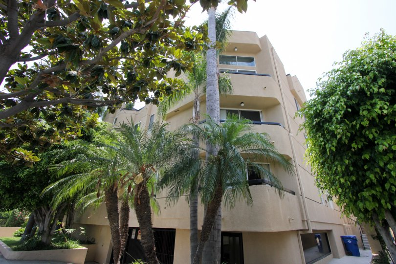 The corner of a four-story building on a sunny day in the Shenandoah Villas community of Beverly Center, California, depicting palm trees and foliage.