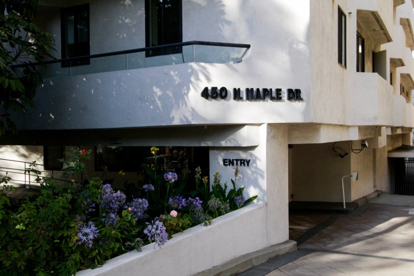 The introduction of 450 N Maple Dr in Beverly Hills