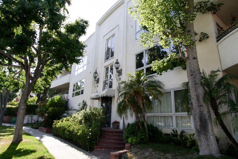 The sidewalk around 9105 Carmelita in Beverly Hills