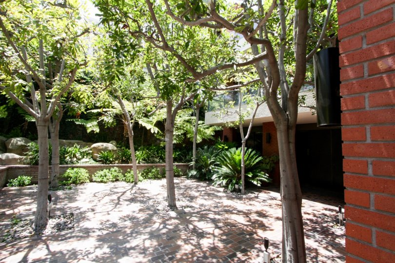 The patio at the Enville in Beverly Hills
