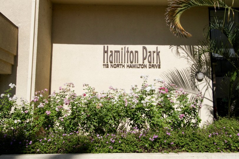 The lettering on the Hamilton Park building