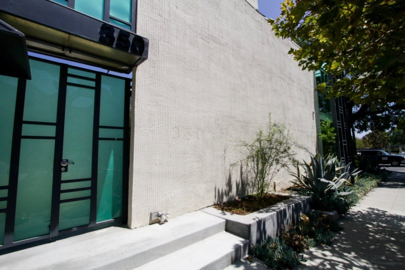 The landscaping around McCarty Courtyard in Beverly Hills