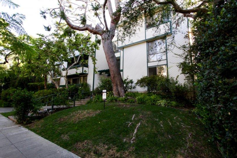The landscaping around the Villa Oakhurst