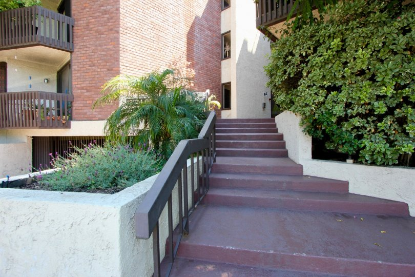 Nice sunny day to take the stairs in Brentwood, California