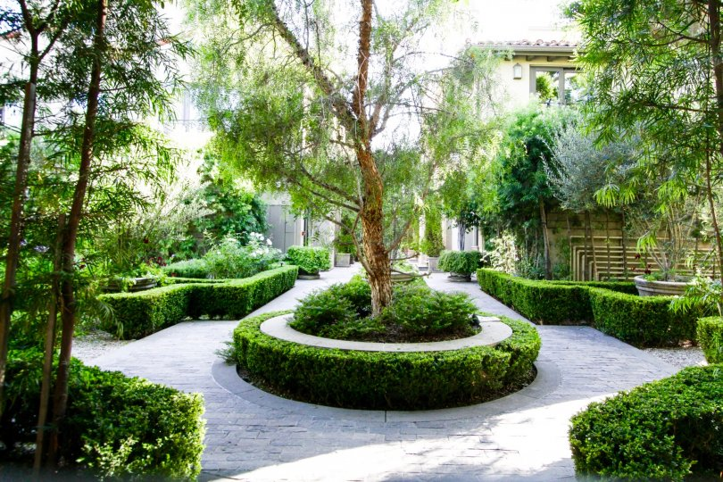 A European style courtyard garden sits center to Brentwood Garden Villas
