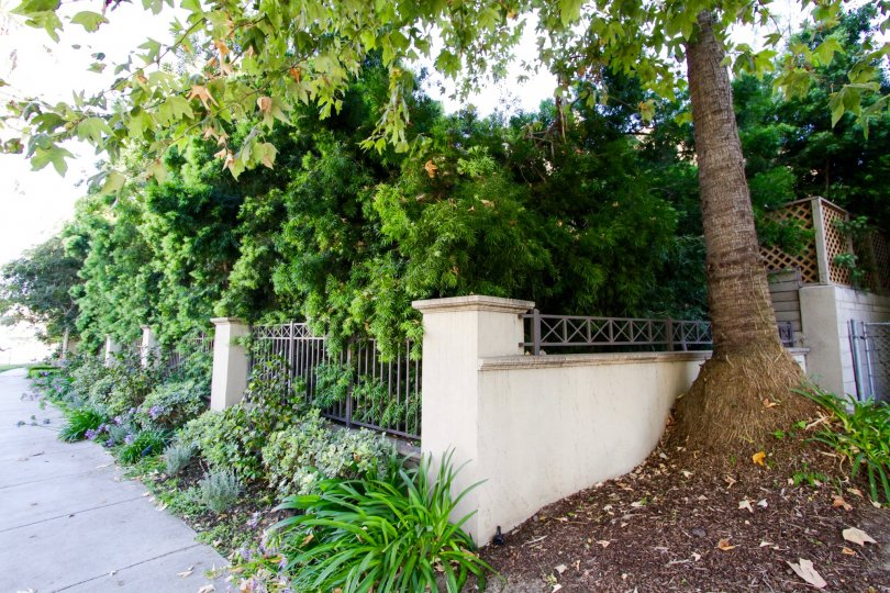 Planters throughout the Brentwood Garden Villas property are meticulously maintained