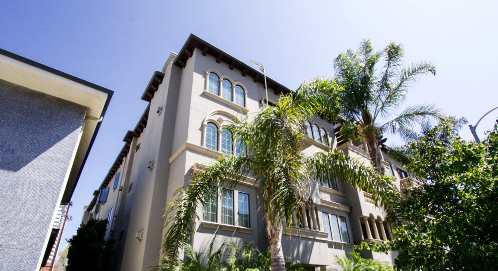 The front of Casa Bella Villas is well landscaped with tall palm trees