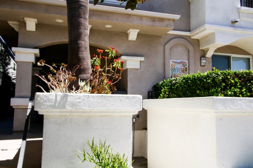 Raised Stucco planters at The Portofino condos