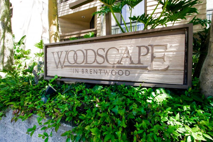 Wood marquee in planter at Woodscape condos