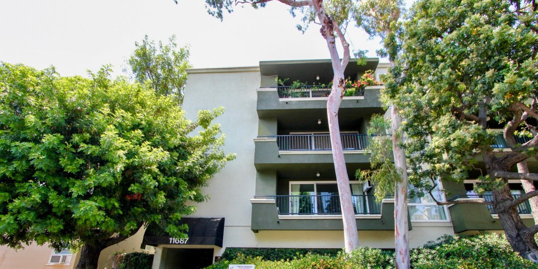 Balconies and trees in front of Coral Tree, Brentwood, California