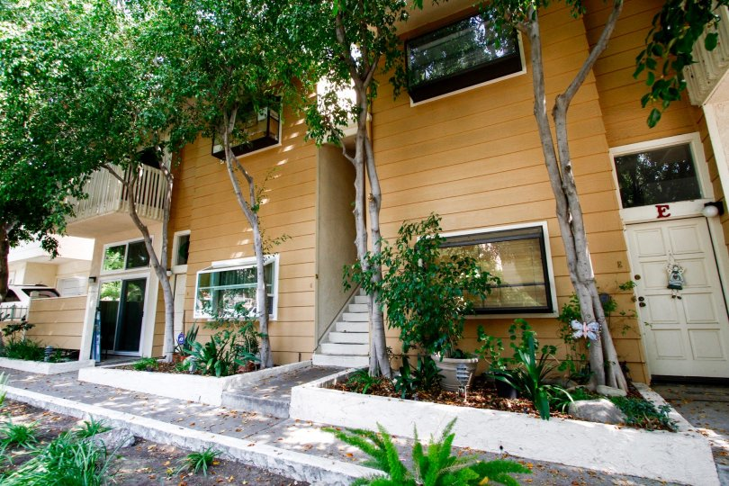 The windows into 456 E San Jose Ave