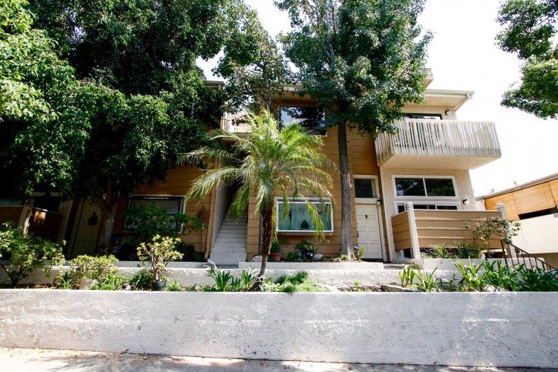The landscaping at 456 E San Jose Ave in Burbank California