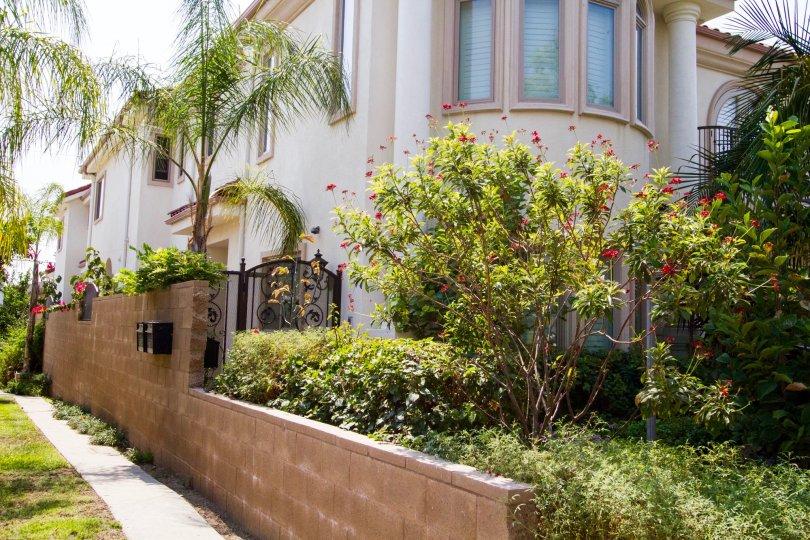 The landscaping at 726 E Santa Anita Ave