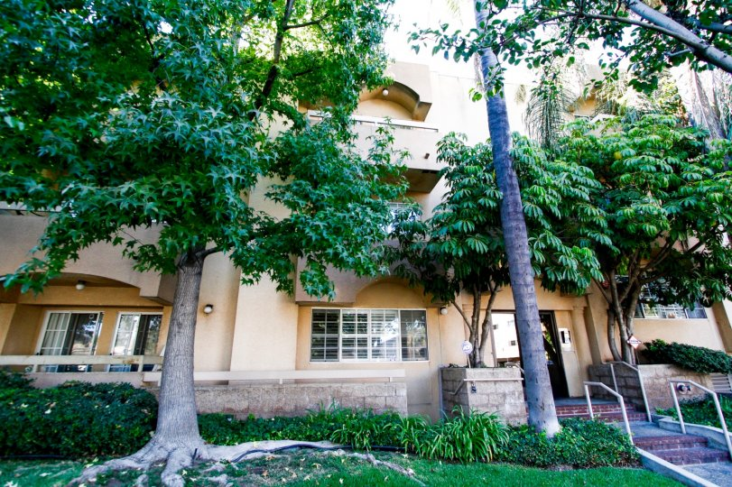 The landscaping around Casa Eva I in Burbank California