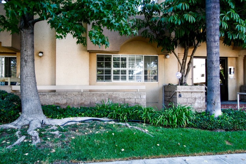 The windows at Casa Eva I