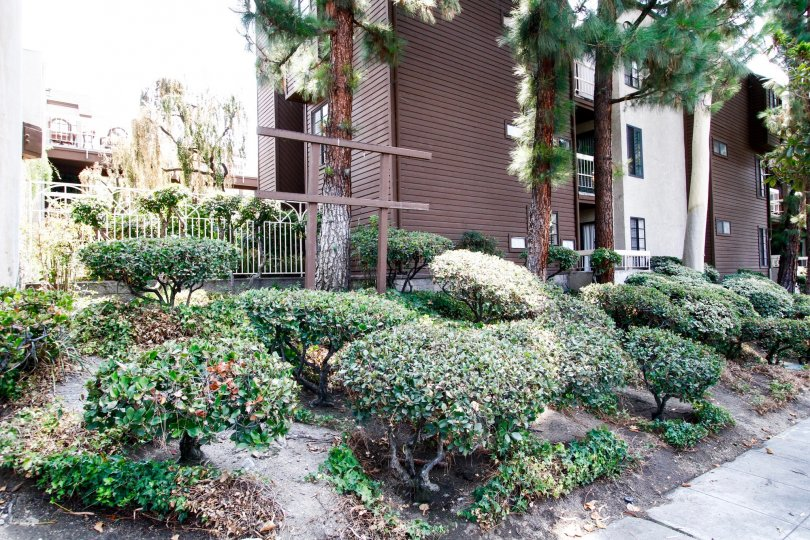 The landscaping at the Woodside Manor