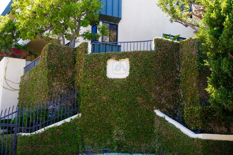 Century Hill building marquee surrounded by ivy