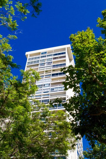 Century Tower is a modern building extending above the tree line