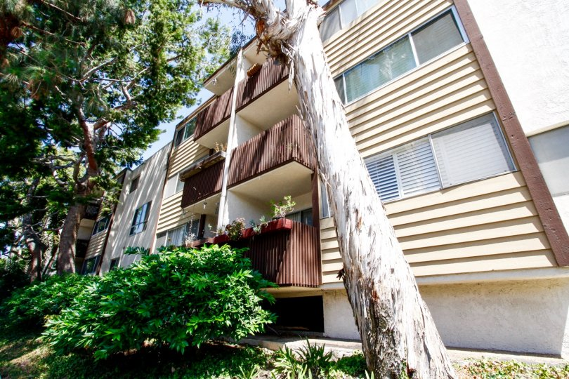 The balconies seen at The Pines