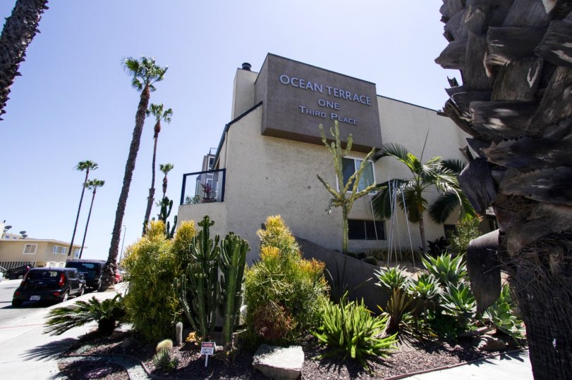 View of the side of the Ocean Terrace building and landscaped planters