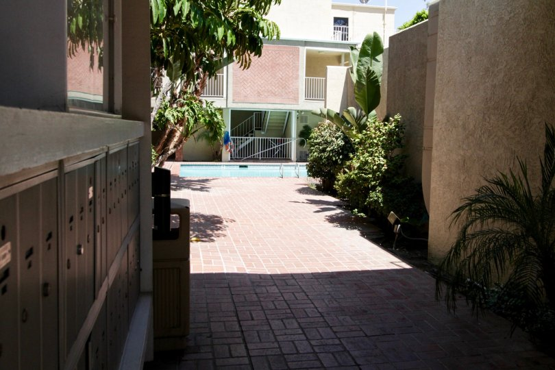 The calming view of the pool from the side entrance of 4610 Densmore Ave in Encino