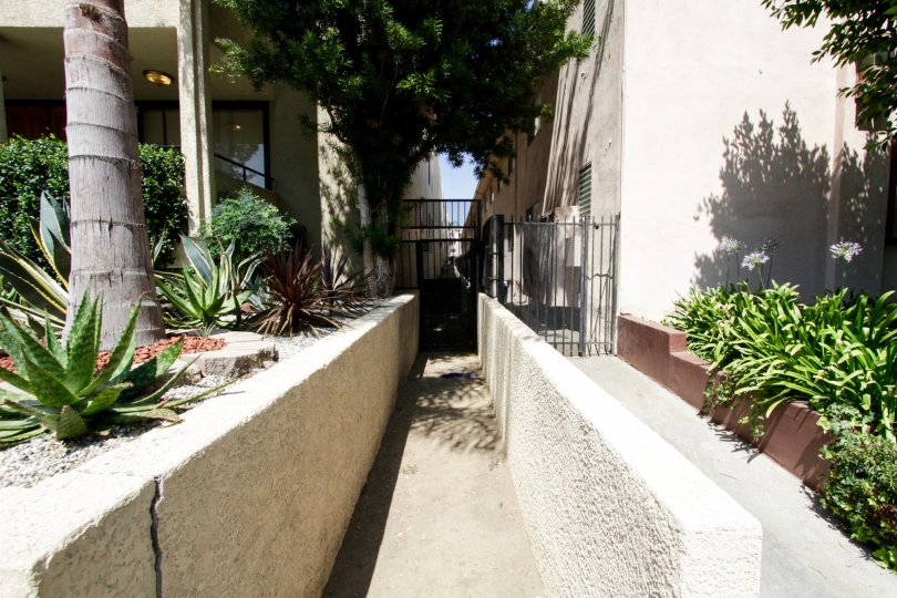 The side alley running along the Encino building at 5339 Newcatsle Ave