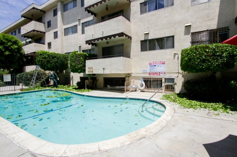 Encino Gardens large pool located within the common area