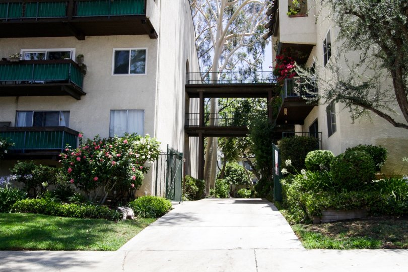 The alley between the buildings located at Encino Oaks