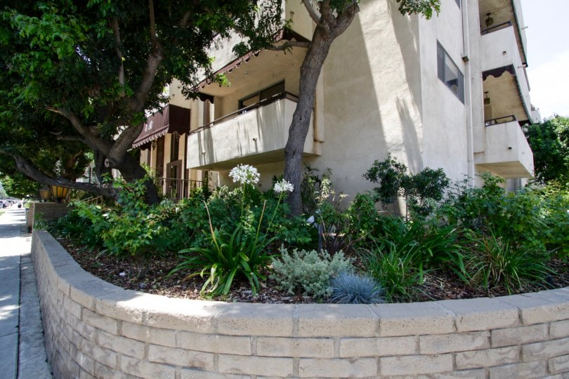 An example of landscaping surrounding the Encino Regency