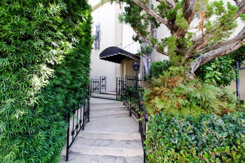 Stairs leading to an entrance in the Encino Spa in Encino