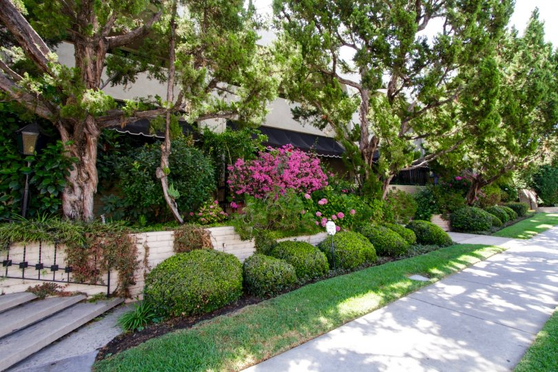 A walkway allowing for admiration of the landscaping performed around Encino Spa