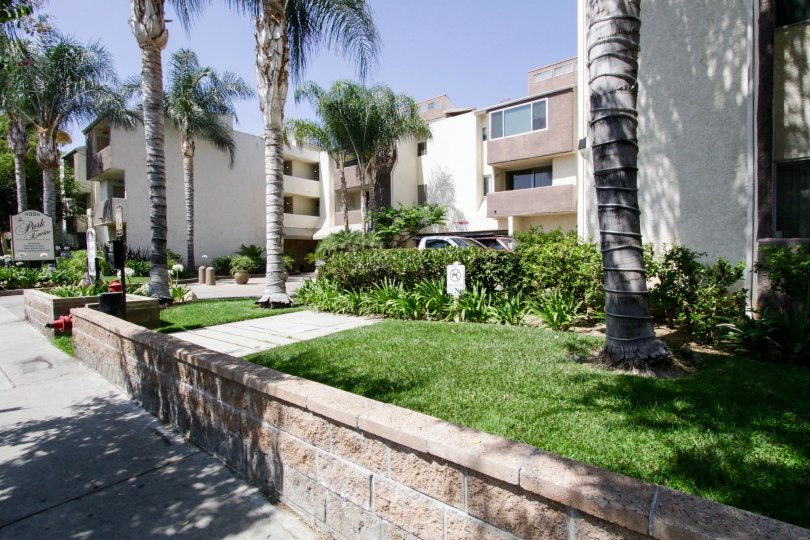 Numerous palm tress surround Park Encino adding to the appeal