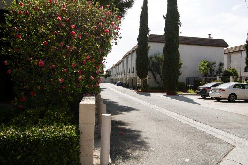 A view of the entire Villa Espana building