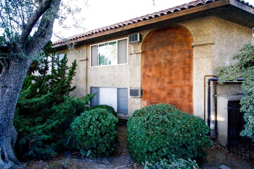 The hedges at Casa de Verdugo in Glendale California