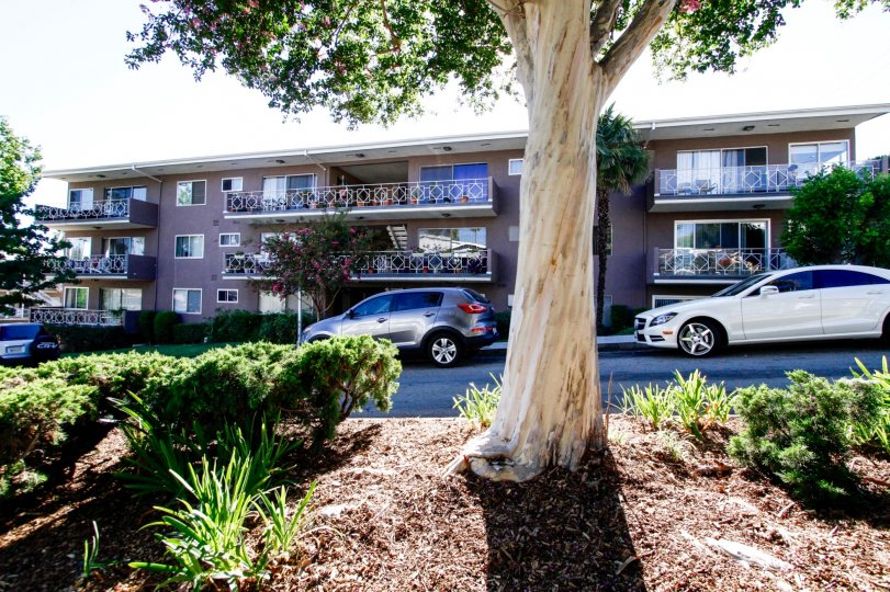 The view of the Glenmont in Glendale California