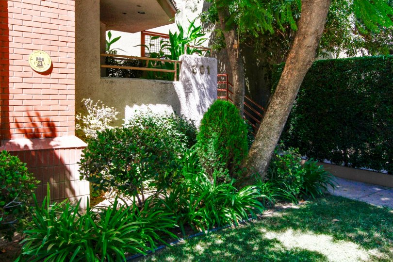 The landscaping at Loraine Townhomes in Glendale California