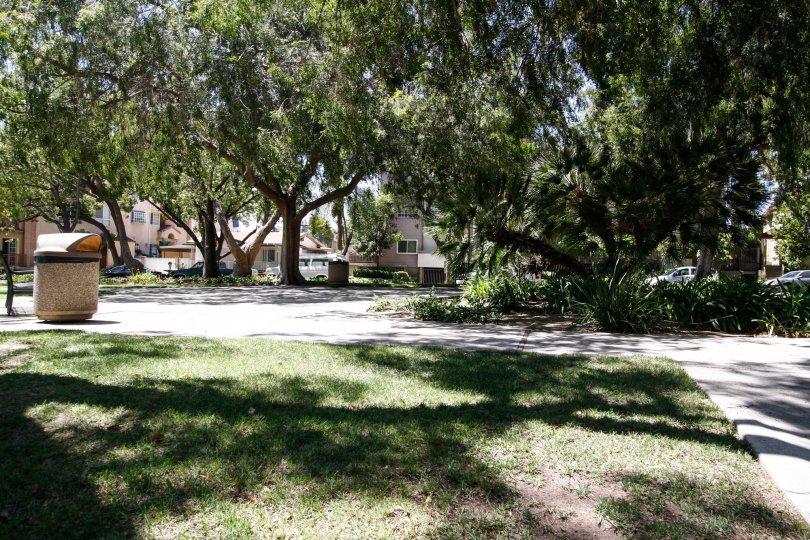 The sidewalk through Piedmont Park